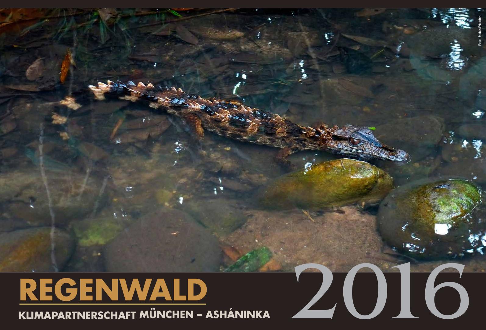 Regenwald_kalender_2016